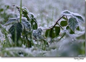 foto-frio