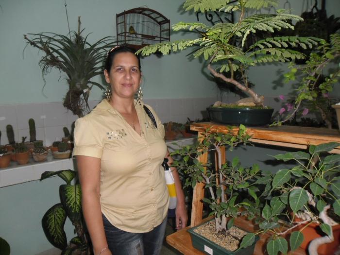 En la casa del bonsai