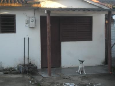 Wilma esperando temblorosa en el portal de la casa