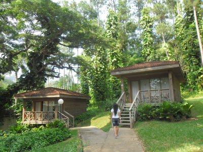 Un paraíso verde en San Vicente, Viñales
