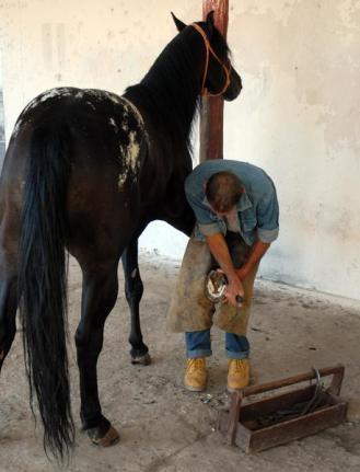 José adora a su caballo que lo acompaña a todas partes
