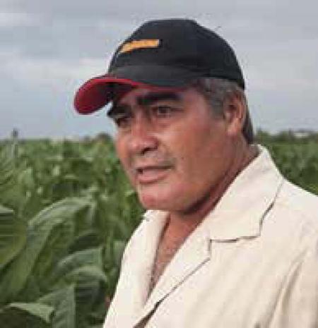 Maximito, Hombre Habano 2012